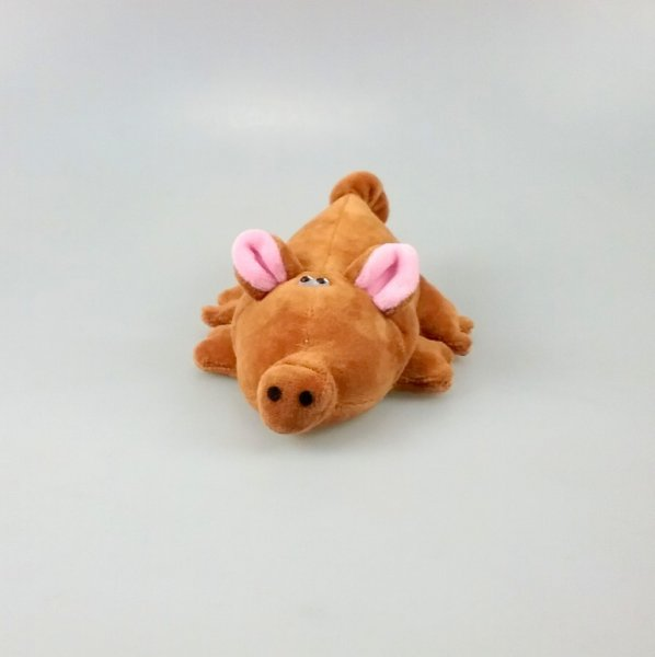 Braune Sau - kleines Schwein