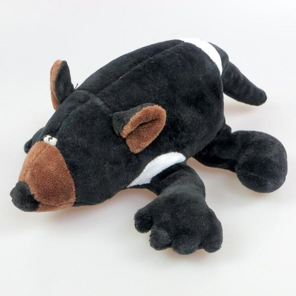 Tasmanischer Teufel Mann