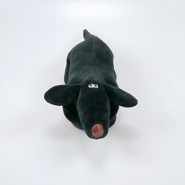 Dackel, der Underdog