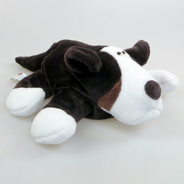Berner Sennenhund - Berni sein Hund