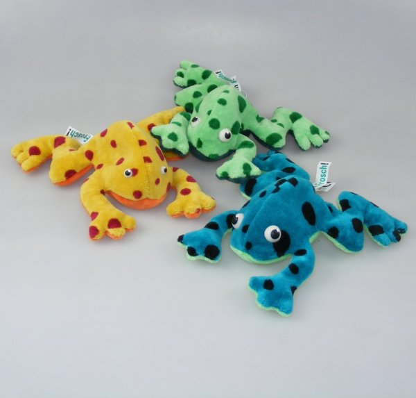 Frosch Jungtier