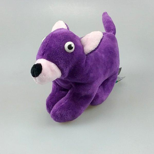 Chihuahua - Mein Schnuckiputz